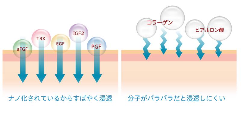 ナノ化レシチンでお肌への吸収力を高めます